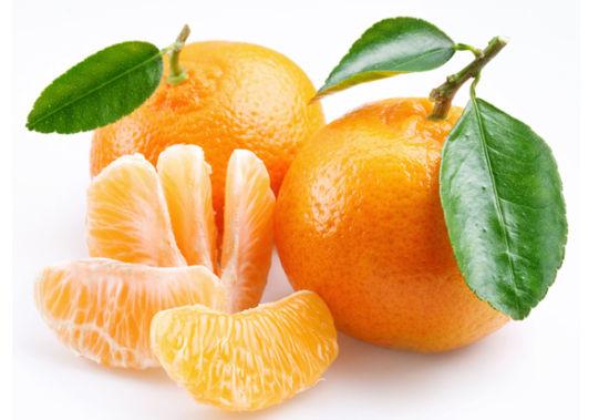 秋季養生水果——橘子