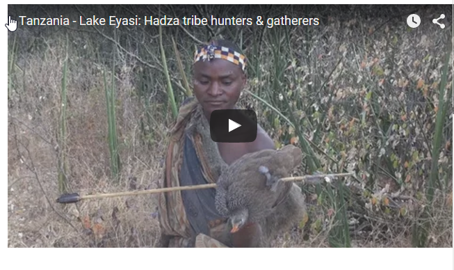 漁獵部落祖先們睡眠時間短,不足7小時