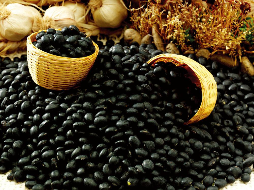 黑色食物黑豆最营养