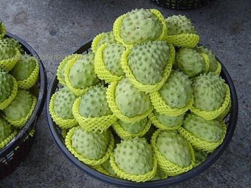 不可貌相的水果——釋迦