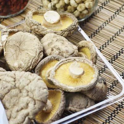 冬天多吃冬菇