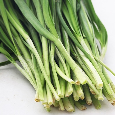 洗腸草、壯陽草——韭菜