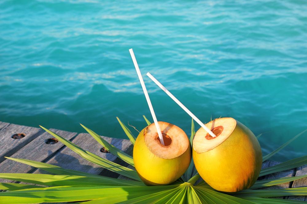 春節最佳飲品——椰子汁