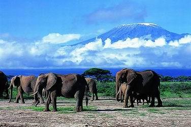 窮遊肯尼亞,你準備好了嗎?