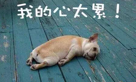 黃奕、黃毅清包了娛樂圈的80%狗血劇