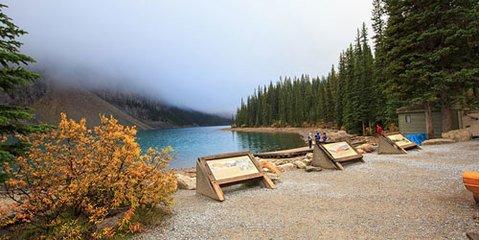 """在加拿大过""""采菊东篱下,悠然望南山""""的生活"""