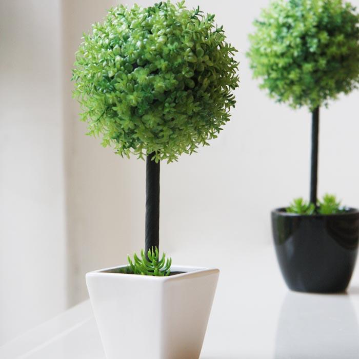 室內多點植物心情好