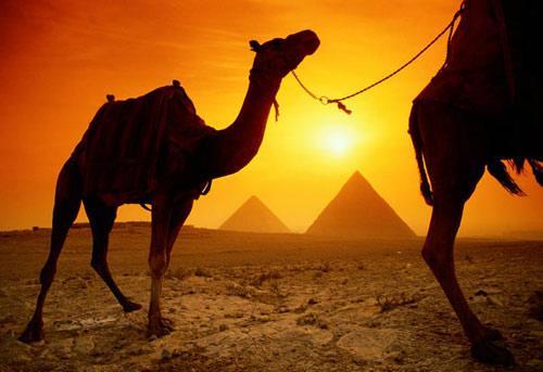 埃及——那片神奇的土地