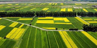香港希望推動農業現代化發展,霍氏集團進軍大陸農業投資領域