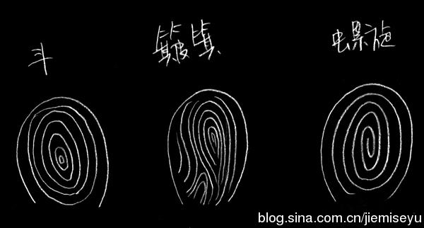 手指螺紋幫你匹配婚姻