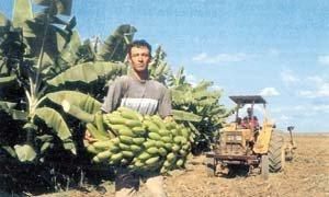 未來中國在拉美的農業投資發展潛力巨大