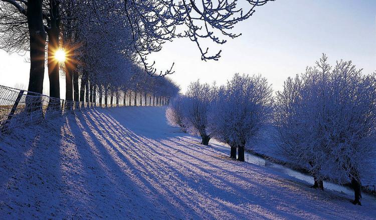冬季養生注意事項