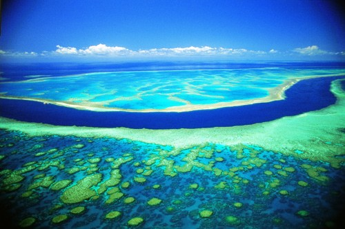 世界上有一個最大最長的珊瑚礁群,它就是有名的大堡礁