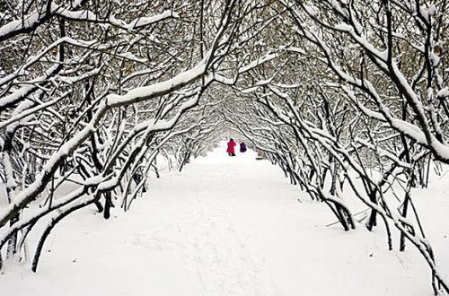 """冰城哈爾濱,""""永不重複的童話"""""""