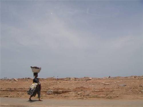 中國電動汽車制造商願助中東北非地區新能源發展