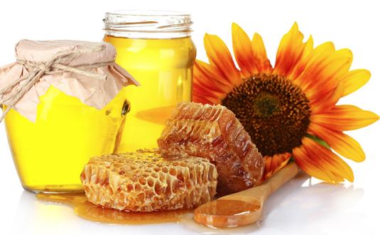 春食蜂蜜正當時