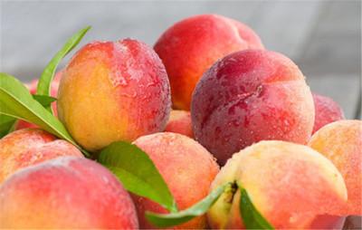 夏季吃桃好處多
