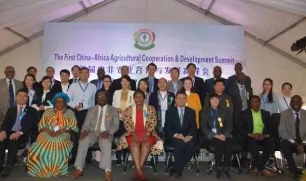"""""""一帶一路""""建設和中非合作十大計劃為非洲國家改善基礎設施帶來機遇"""