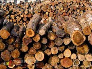 中非林產品貿易如何加快發展、如何實現轉型升級?