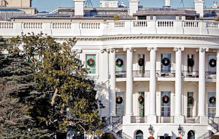 兩世紀見證 白宮最老樹末日