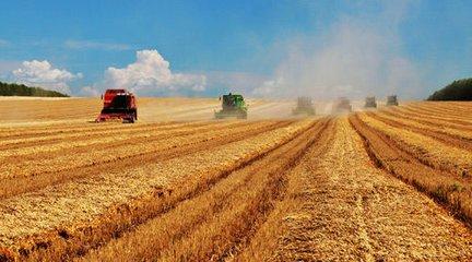農村創業創新風生水起