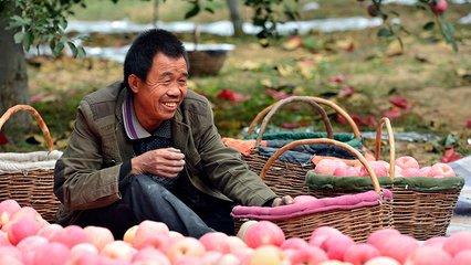 中國將進一步為其他國家的扶貧工作傳經送寶