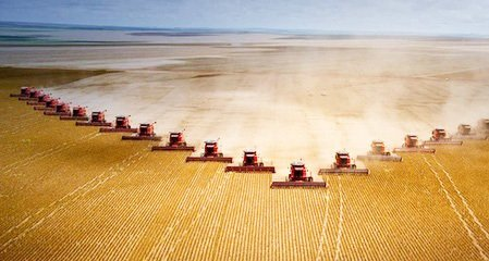 巴西現代農業進入新時期