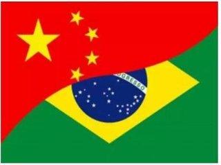 巴西與中國一起努力實現糧食安全