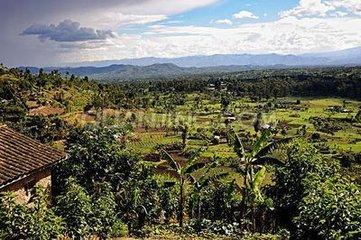 中國地質工程集團旗下項目將改善盧旺達農業生產狀況