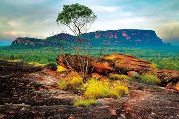 澳洲大陸的狂野魅力