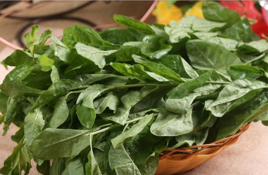 春夏交替,吃這三種野菜對身體大有好處!